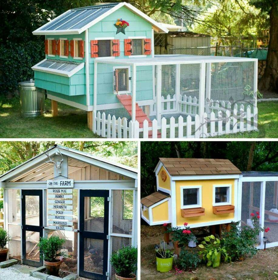 Pin By LeeAnn Anderson On Animal Buildings /Shelters