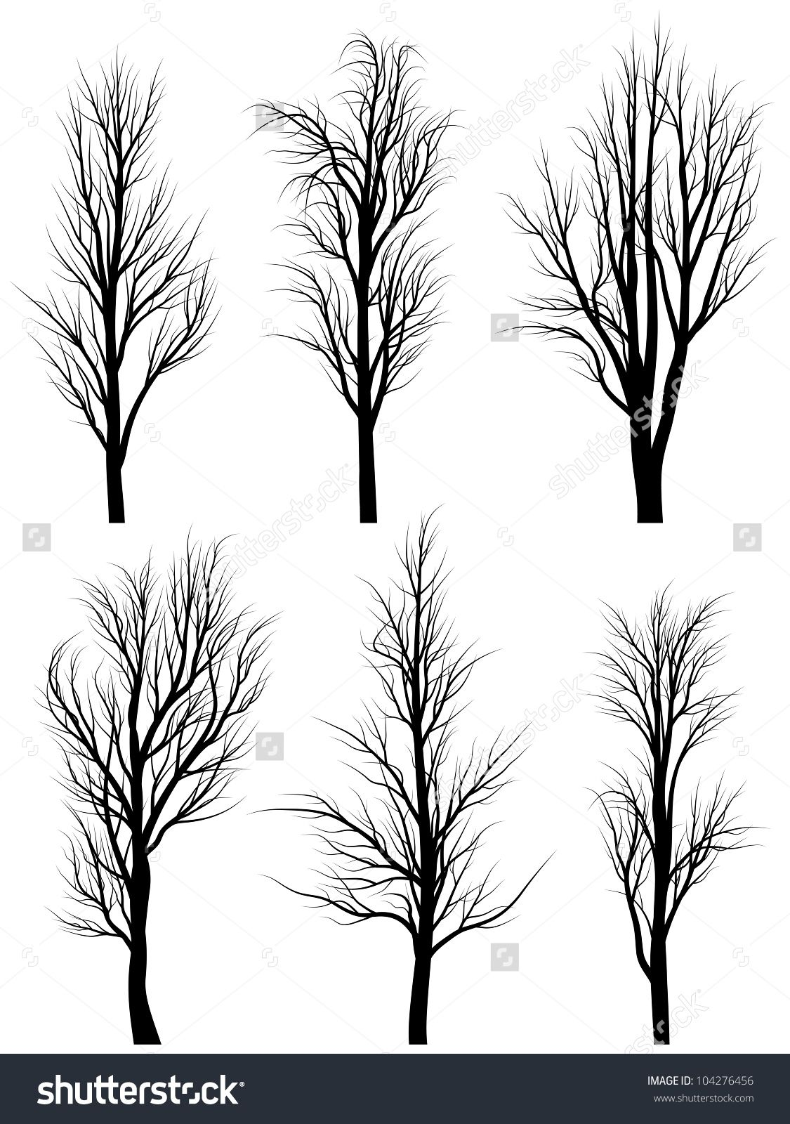 Set Of Vector Silhouettes Of Birch Trees Without Leaves During The Winter Or Spring Period Birch Tree Tattoos Tree Art Birch Tree Art