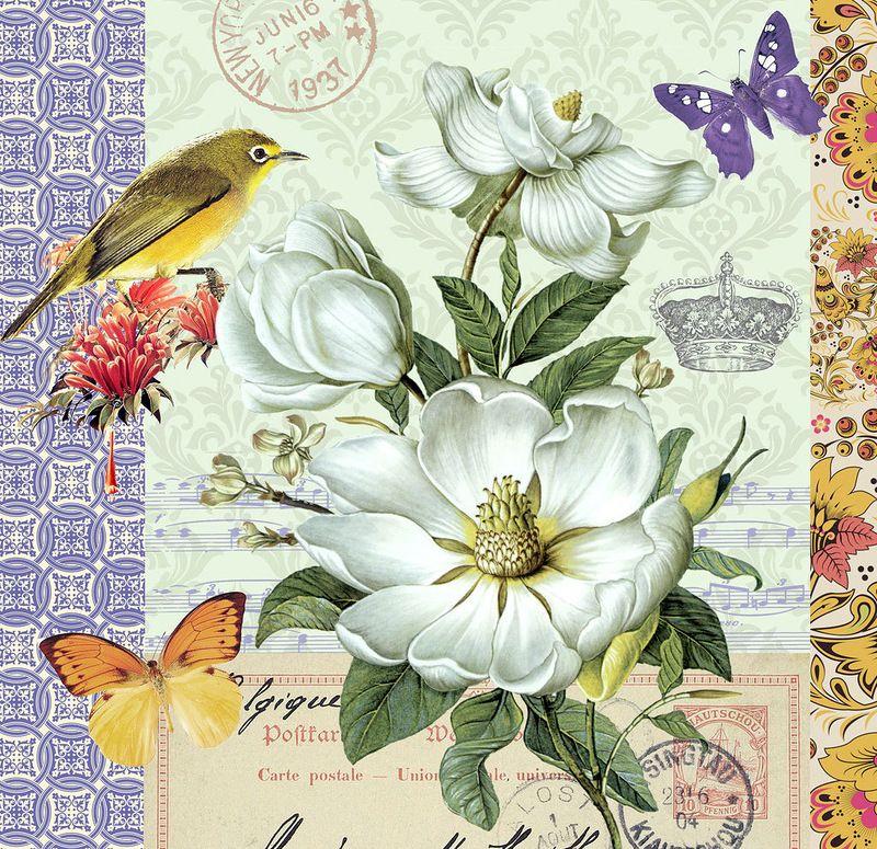 P jaro aves pinterest - Laminas decorativas vintage ...