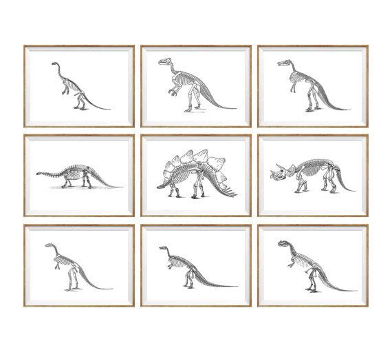 Dinosaur Art Print SET of 9. dinosaur wall art, vintage dinosaur art, for toddlers, dinosaur skeleton, kids dinosaur art, for kids, dino