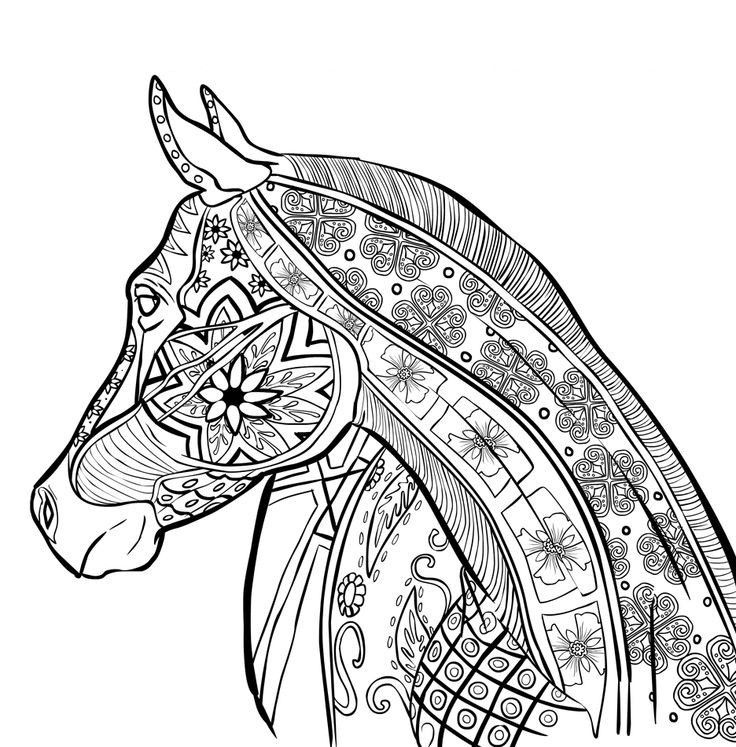 Pin by Dot L on coloring pages | Horse coloring pages ...