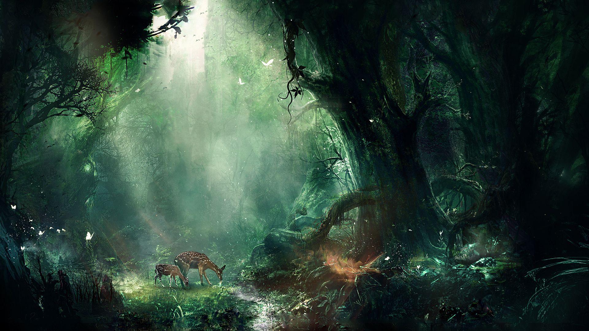 Fae Forest Fantasy Landscape Fantasy Forest Jungle Wallpaper
