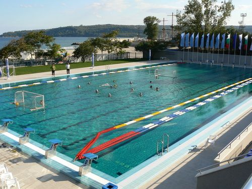 Pool Ioniser Silver Chlorine Free Alternatives To Chlorine
