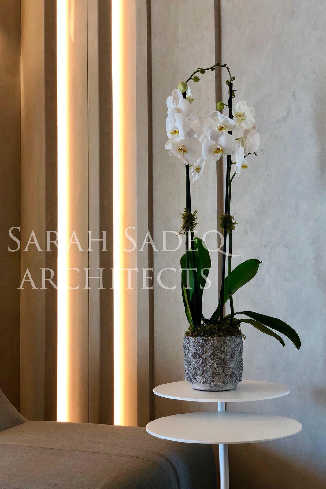Sarah sadeq architects sarah sadeq architectes in pinterest