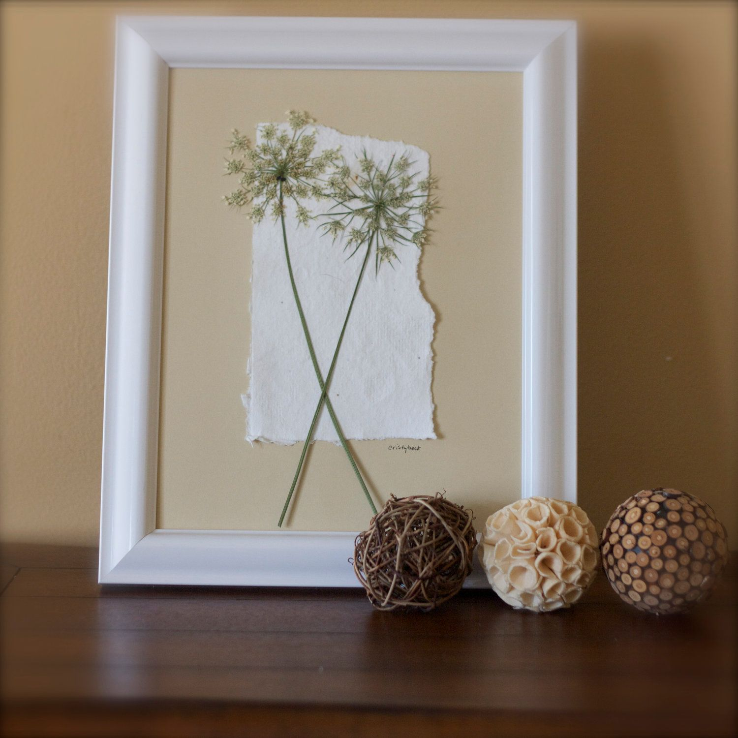 Pressed Botanical Art  Pressed Queen Annes Lace Shabby Chic