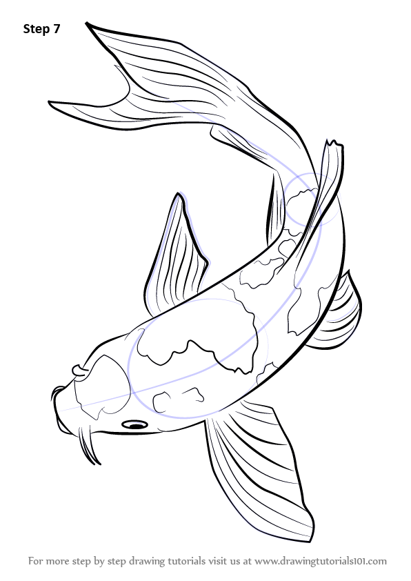 Step by step how to draw a koi fish drawingtutorials101 for How to draw fish