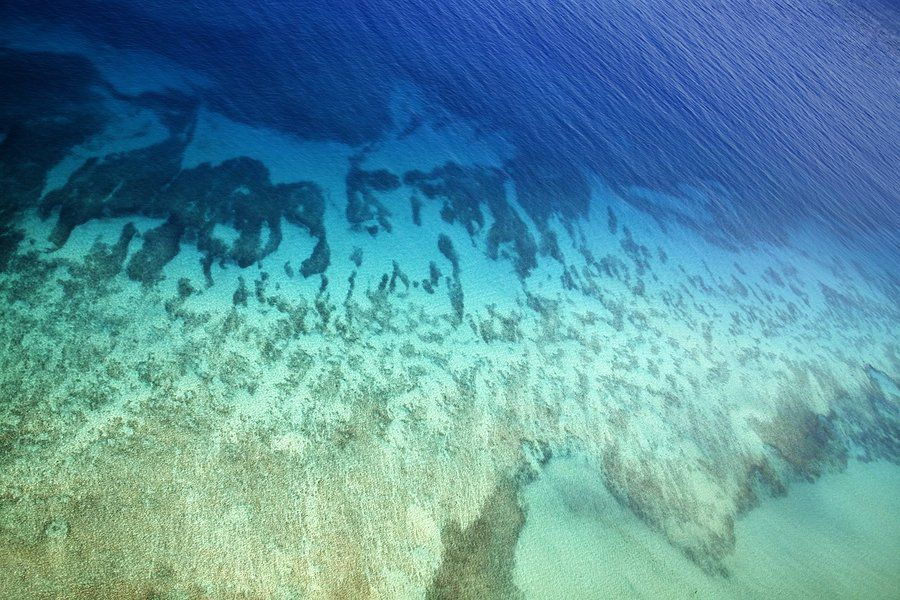Google maps to offer street view of the ocean floor soon there may google maps to offer street view of the ocean floor soon there may be a google maps street view of the underwater world last week in the florida keys gumiabroncs Image collections
