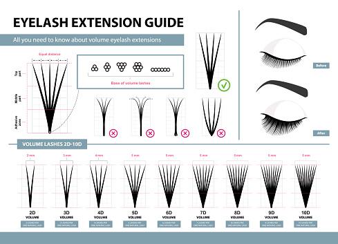 Eyelash extension guide. Volume eyelash extensions. 2D