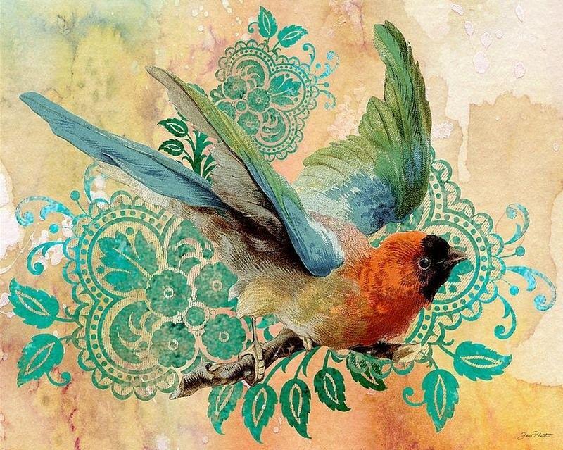 картинки птиц для декупажа