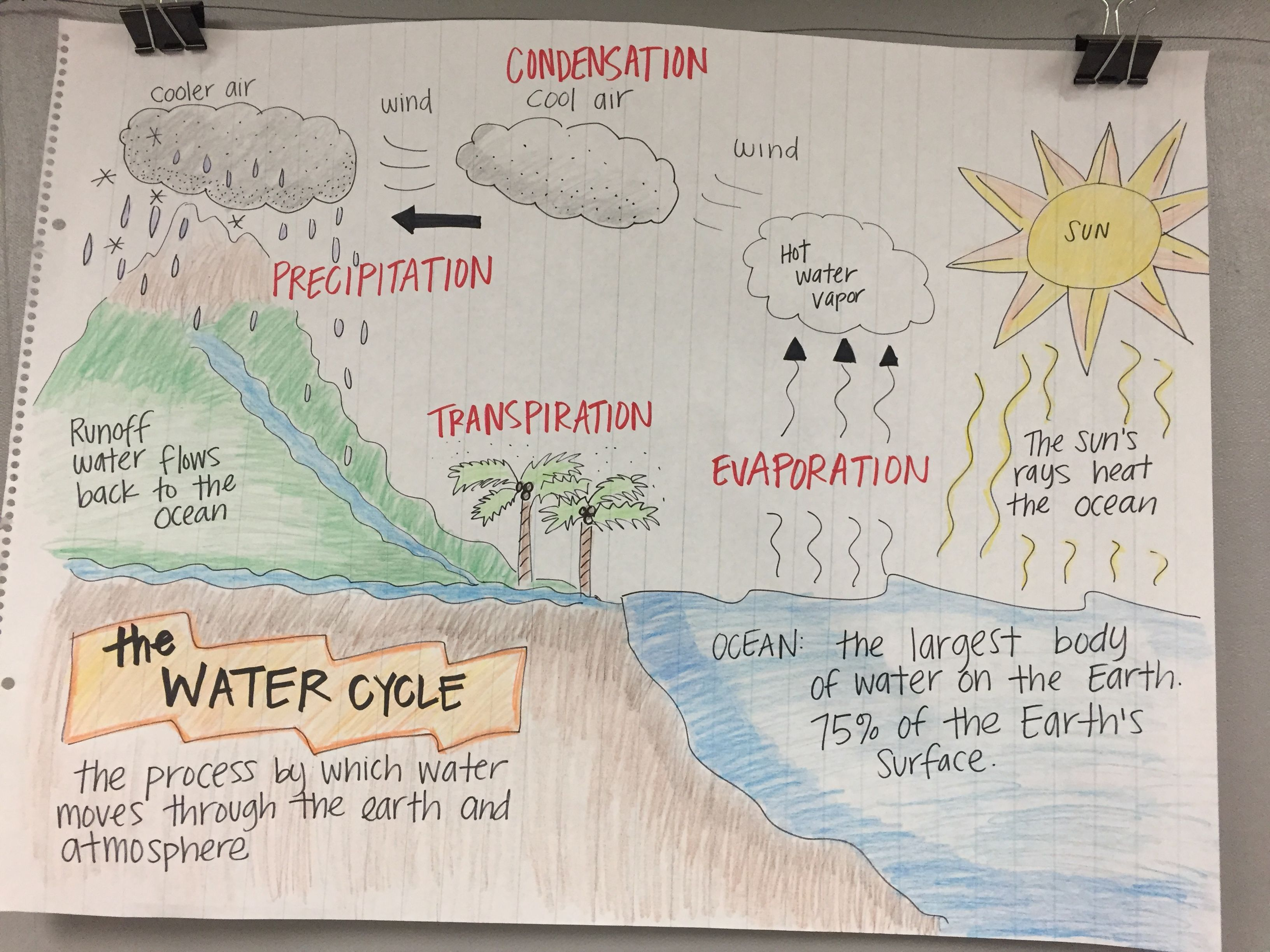 The Water Cycle Anchor Chart   Science anchor charts [ 2448 x 3264 Pixel ]