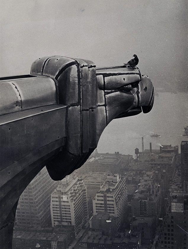 Pigeon And Eagle 1931 11 14 Chrysler Building Art Deco Buildings