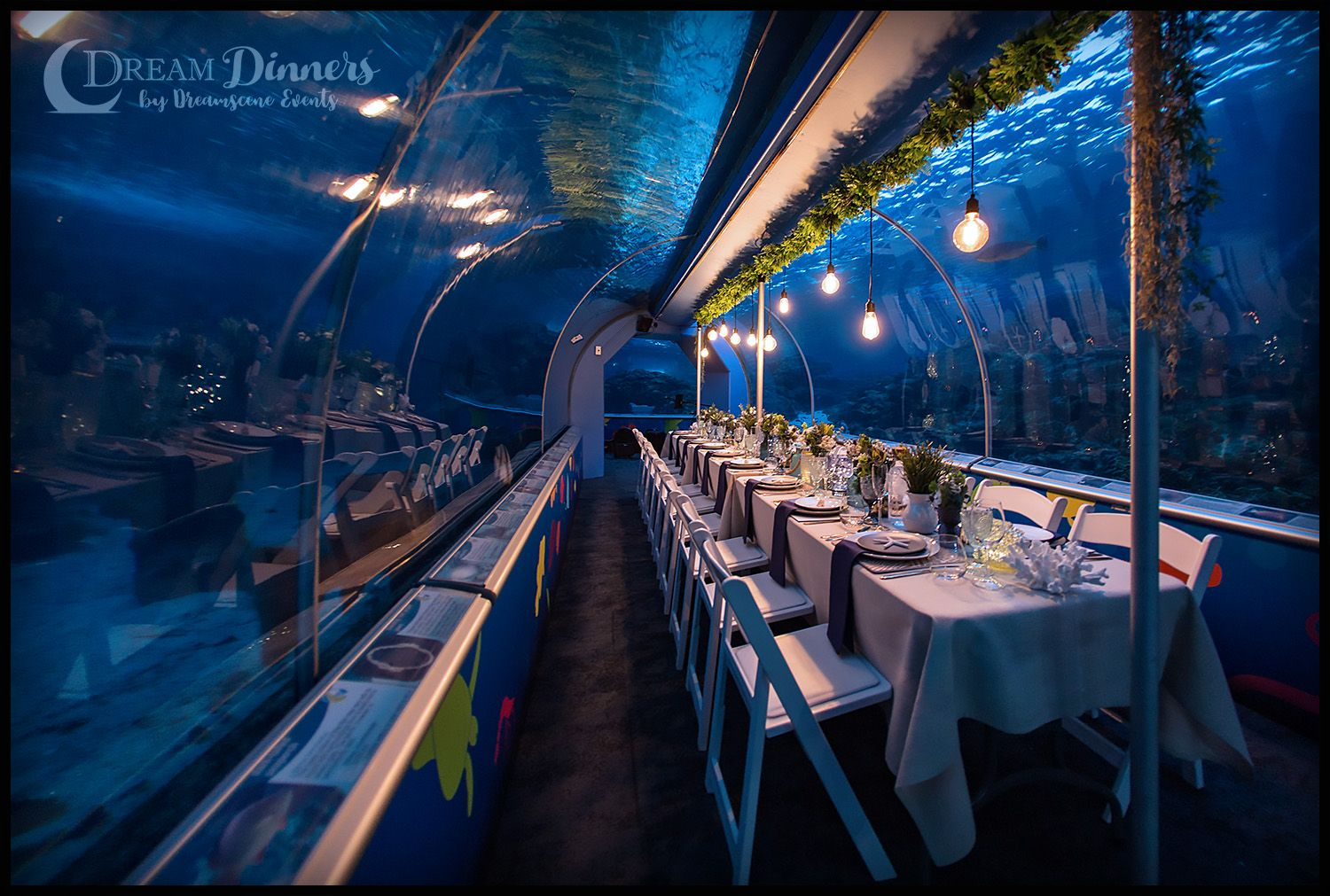 Aquarium Tunnel Dining Experience like no other! Dining