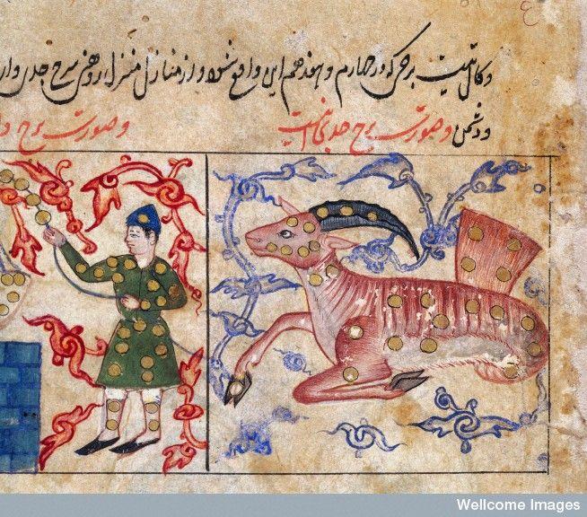 Detail Of Folio Showing Capricorn And Aquarius Wit