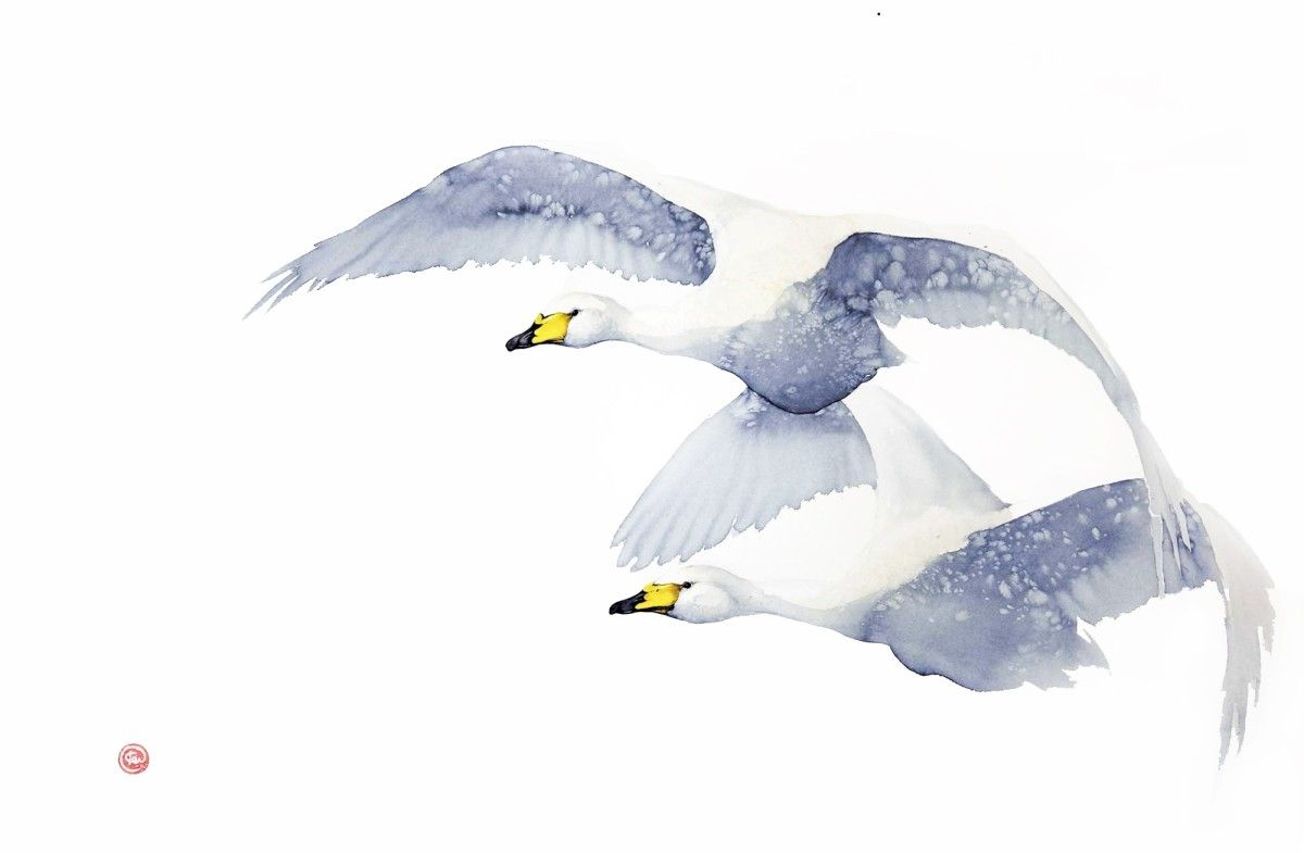 Karl Martens, Whooping Swans | Cricket Fine Art