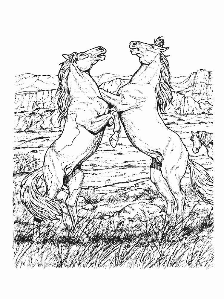 Horse Coloring Pages Hard Horse Coloring Pages Horse Adult Coloring Horse Coloring