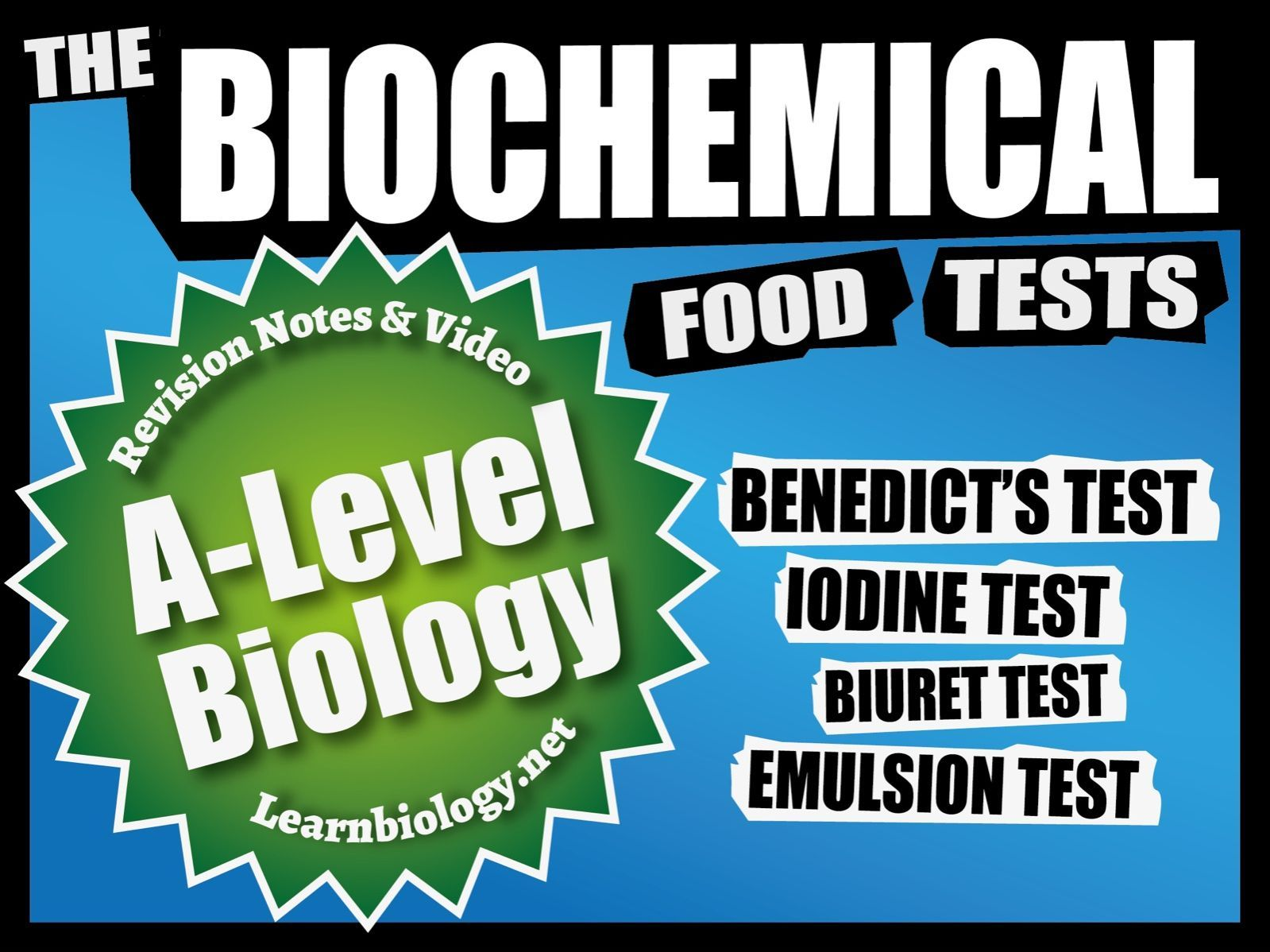 A Level Biology The Food Tests Revision Notes And
