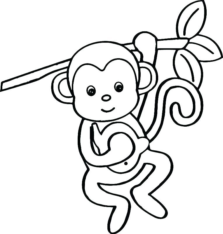 Monkey Coloring Images Monkey Color Page Squirrel Monkey Color