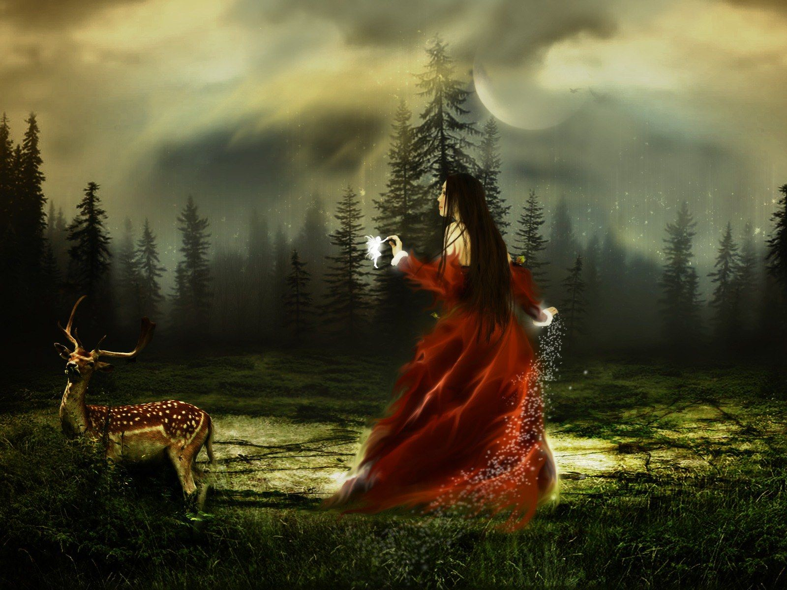 Dreamy Forrest Fairy Wallpaper From Fantasy Wallpapers