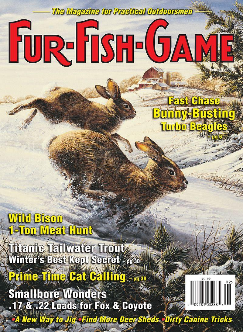 21++ Big game fishing journal info