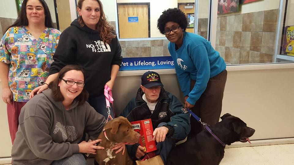 Volunteers Reunite Veteran With The Beloved Dogs He Thought He Would Never See Again Beloved Dog Animal Shelters Near Me Veteran
