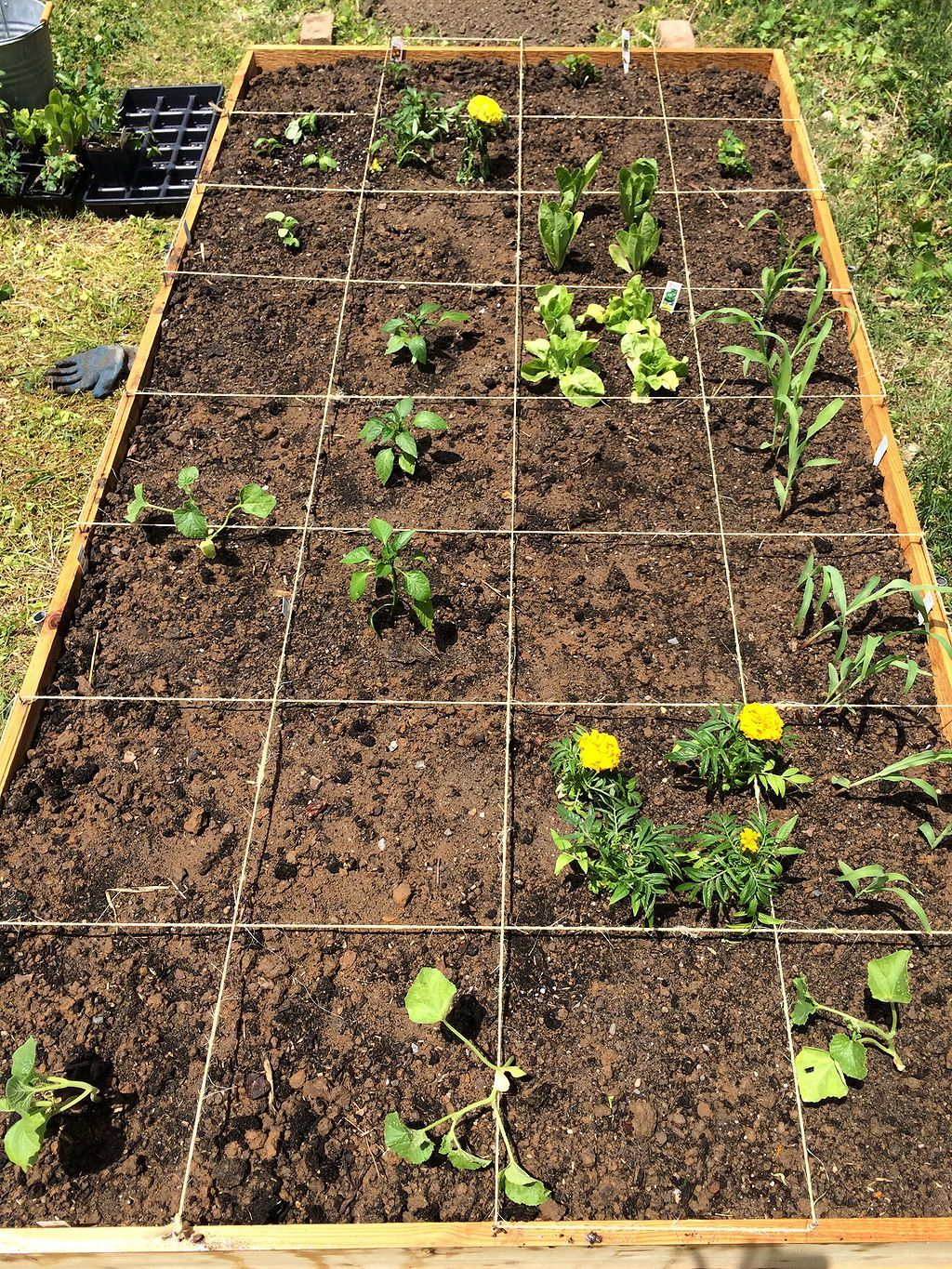 17 Square Foot Gardening Ideas   Replant, Vegetable garden and ...