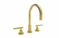 Photo of Eastern linear widespread faucet