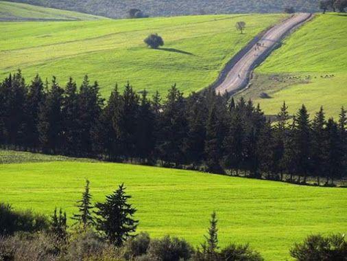قالمة الجزائر منظر طبيعي خلاب Natural Landmarks Nature Landmarks