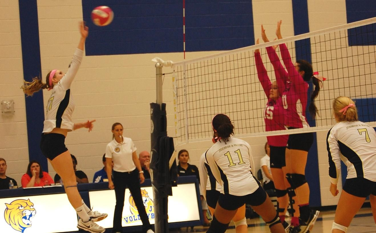 Lady Wildcats Complete Season Sweep Of Davidson County Cc Women Volleyball Seasons Wild Cats