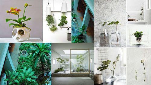 Tips Desain Taman Dalam Rumah Desain Rumah Minimalis Desain Rumah Minimalis Desain Interior