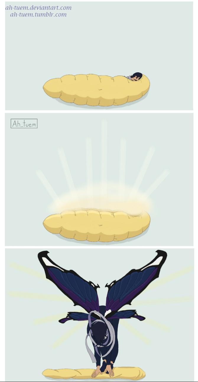Aizawa turned into a beautiful butterfly | My hero academia