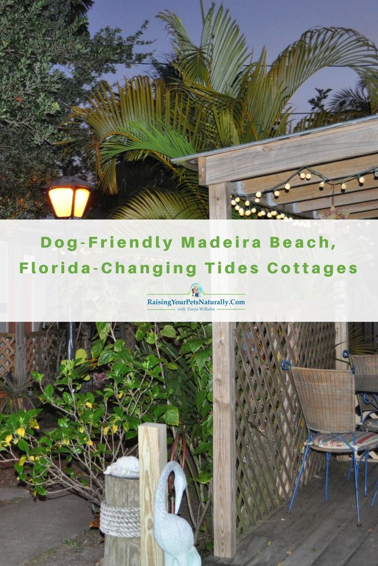 Tides Madeira Beach Fl The Best Beaches In The World