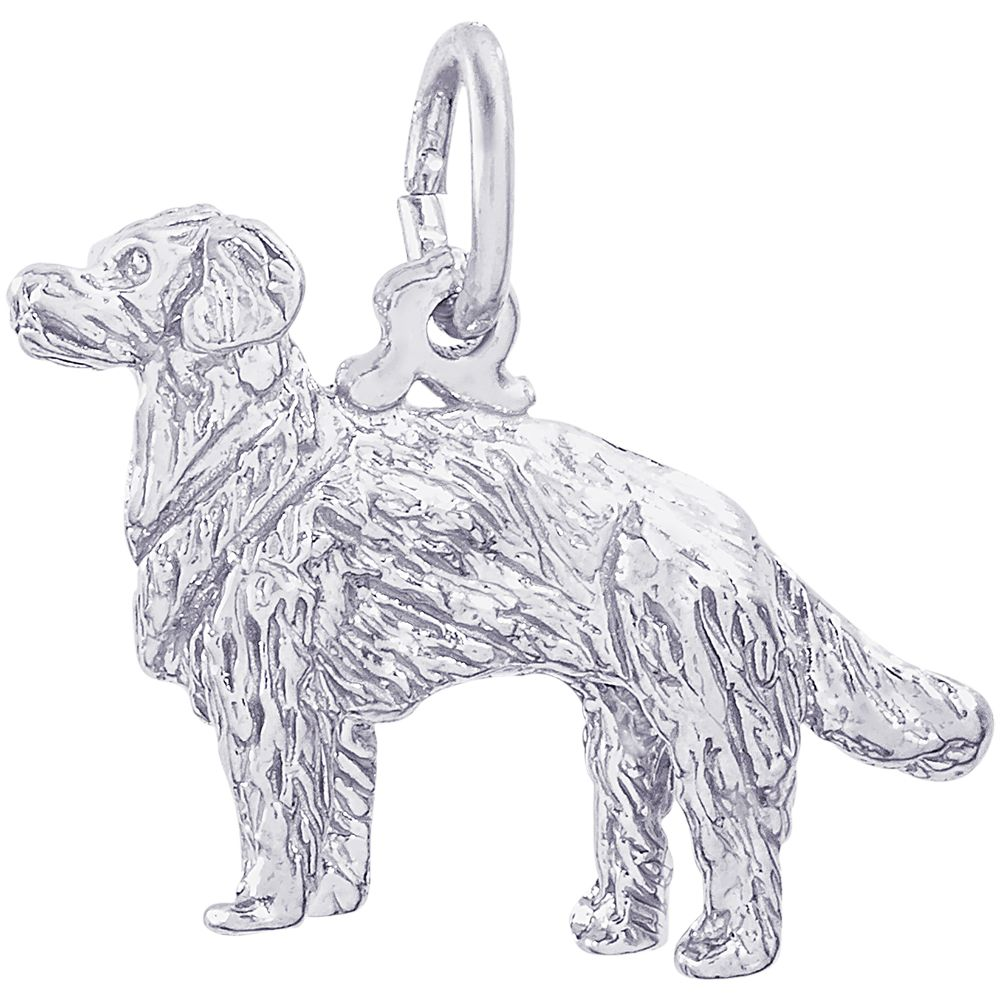 Golden Retriever Dog Charm White Gold 10 1097 Dogs Golden
