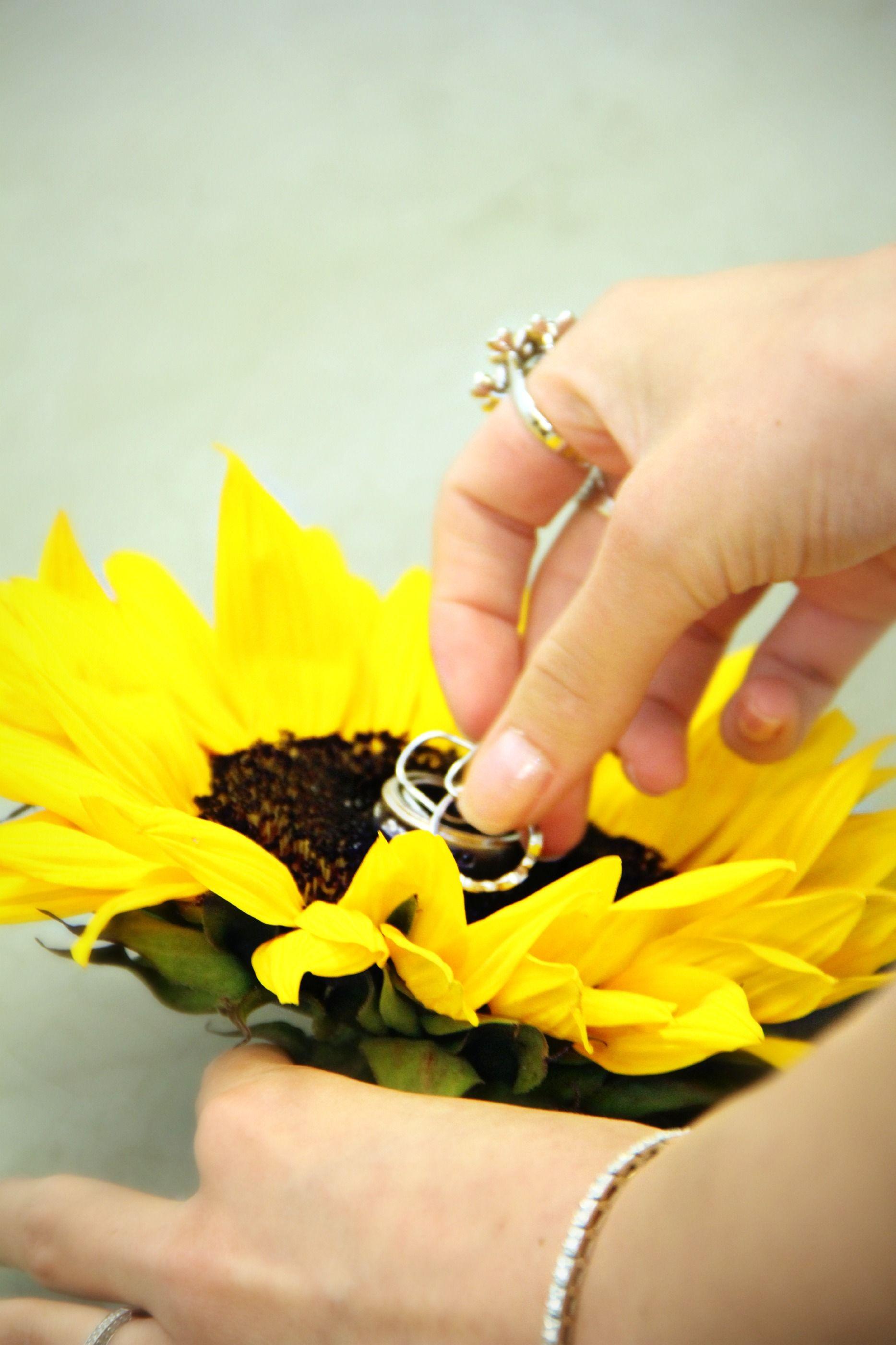 Sunflower ringbearer pillow. Wedding mix, Rustic