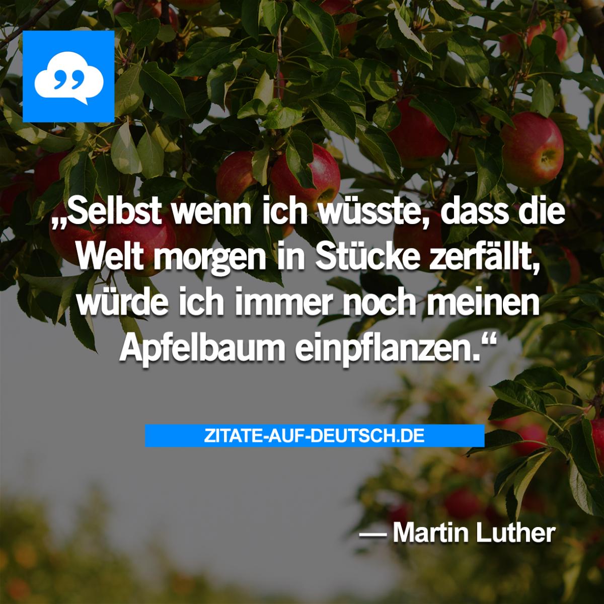 Apfelbaum Hoffnung Spruch Spruche Welt Zitat Zitate Martinluther Zitate Spruche Schone Zitate