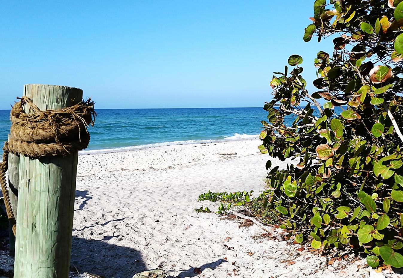 We are located on the beach on Manasota Key!   Pearl beach ...