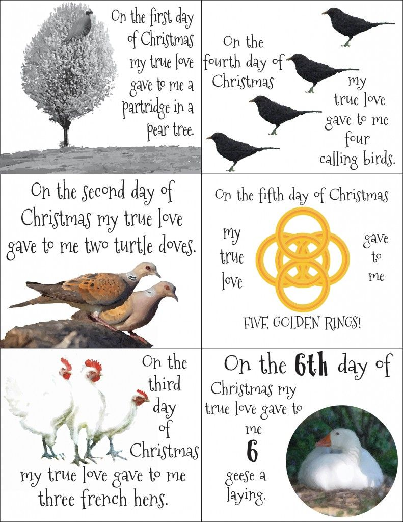 12 Days Of Christmas Craft Ideas Part - 40: 12 Days Of Christmas Gift Ideas And FREE Printable