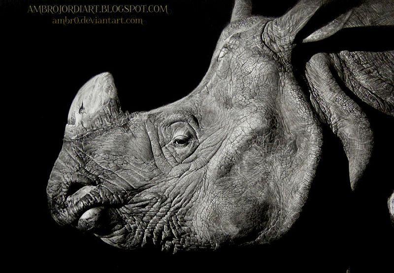 El Hurgador [Arte en la Red]: Rinocerontes (LII)-Ambro Jordi