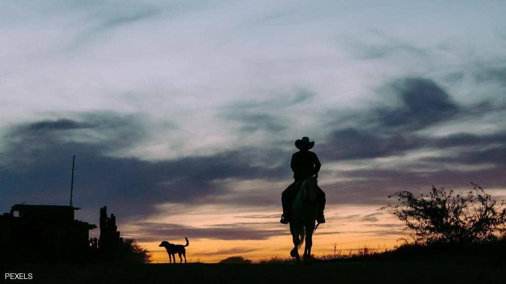 تهمة جديدة بأستراليا محاكمة رجل بتهمة التحدث بالمحمول أثناء ركوب الخيل Celestial Sunset Outdoor