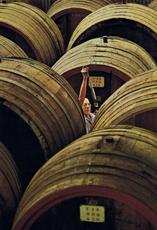 Italiaanse wijnmaker aan het werk.