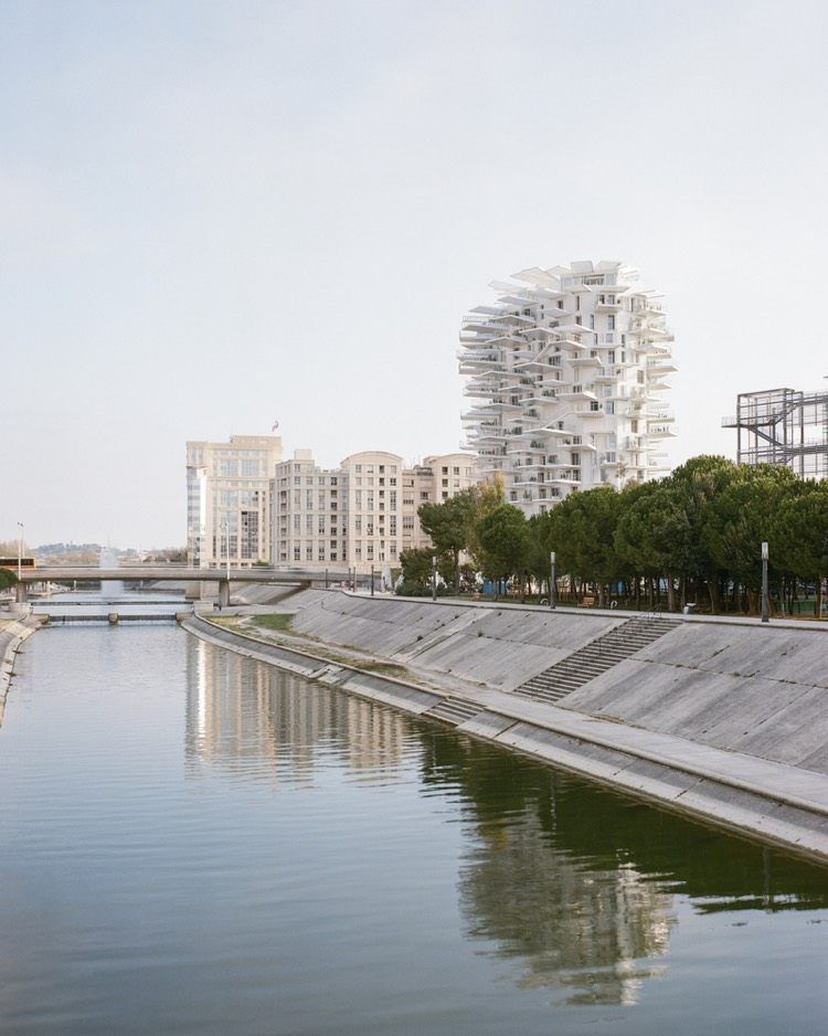 L Arbre Blanc De Montpellier Un Incroyable Immeuble Melant Deux Cultures Arbres Blancs Sou Fujimoto Comment Construire Une Cabane