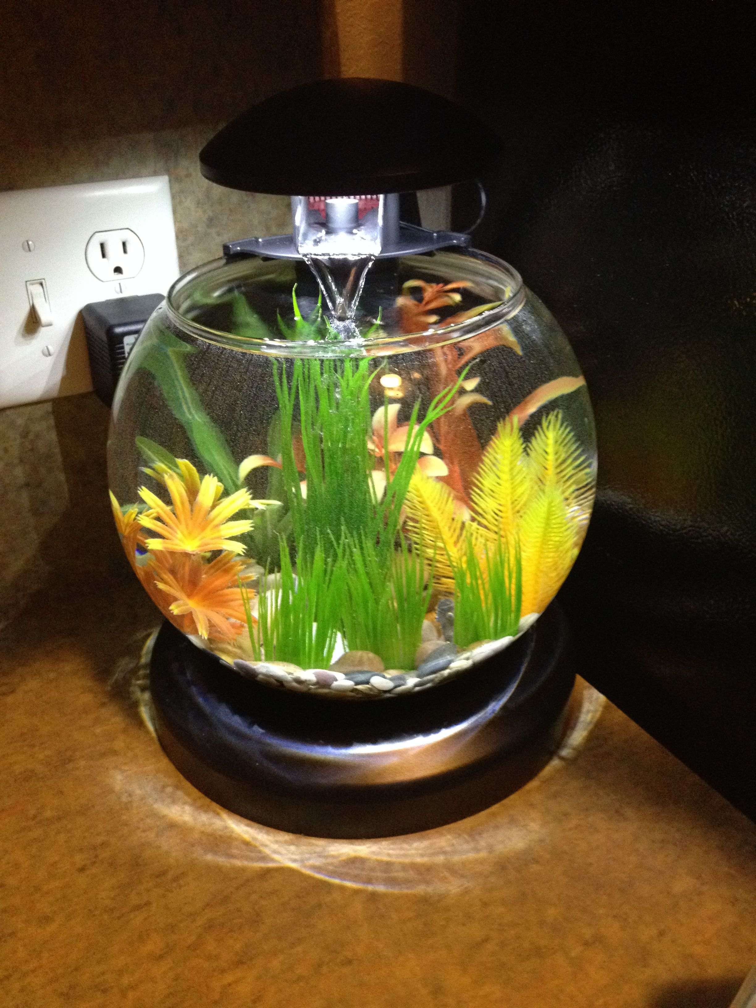 Betta fish bowl with waterfall filter and heater betta for Betta fish tank with filter