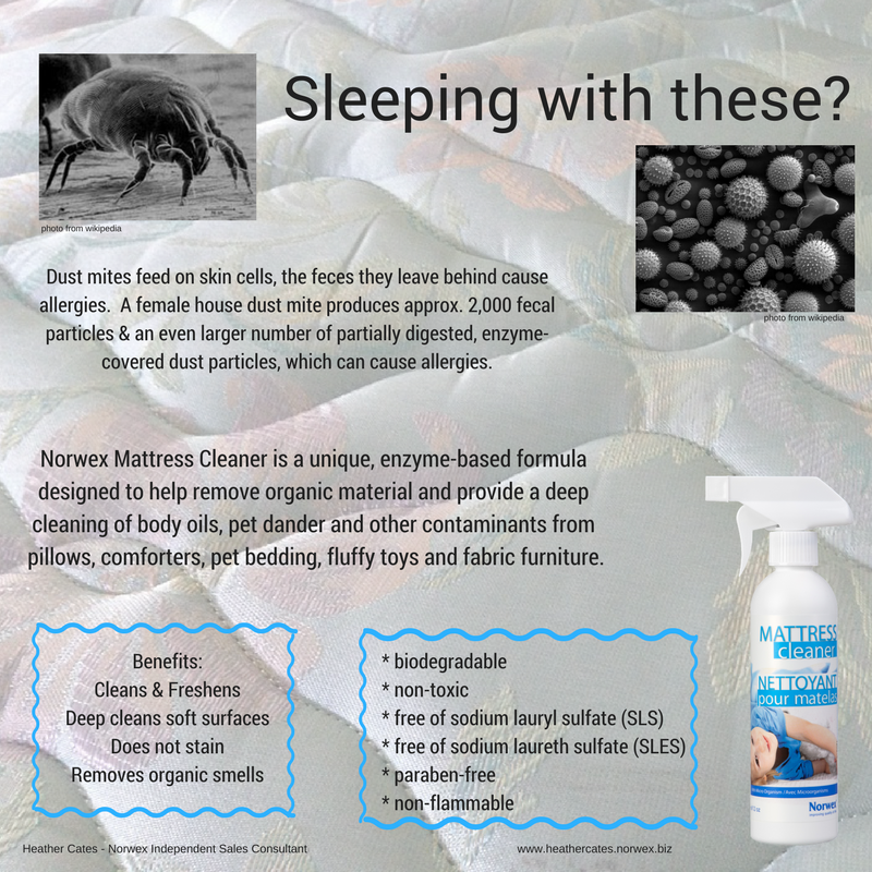 Changing Bed Sheets Once A Week Is A Must Do But How Frequently Do You Wash The Mattress Cover And Tend To The Norwex Mattress Cleaner Mattress Cleaner Norwex