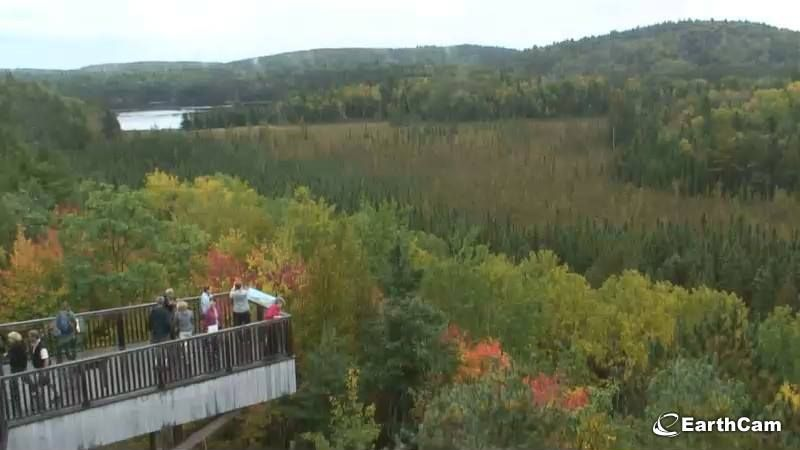 Fall colours from the Visitors Centre here in #AlgonquinPark