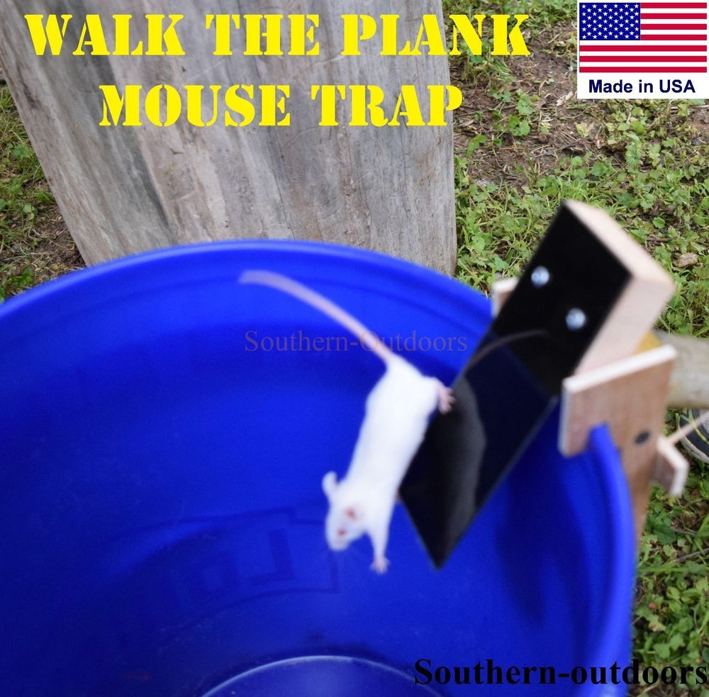 Stupid Mouse Trap Stupid Mouse Easy Mouse Rat Trap Best Mouse