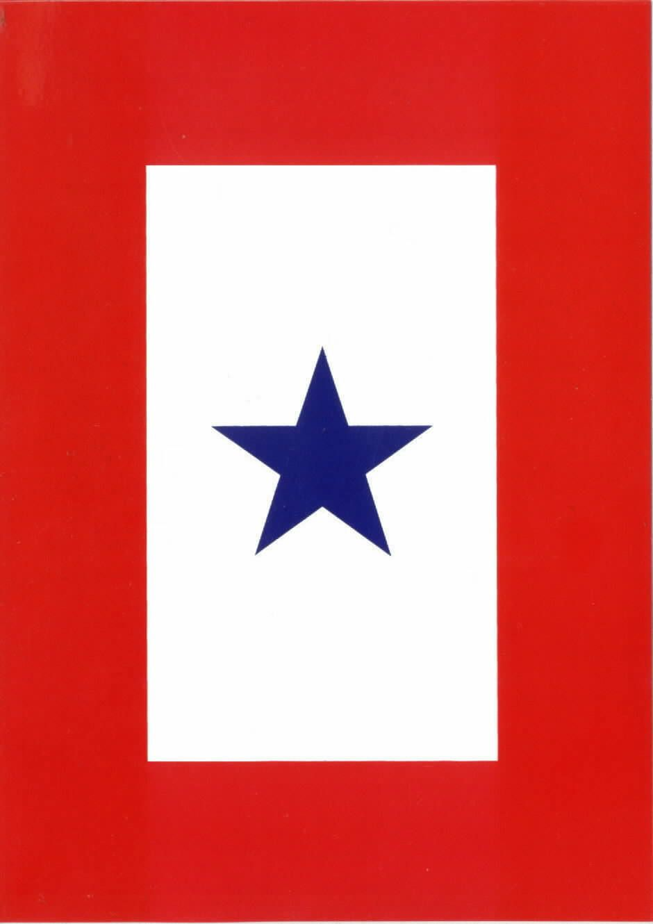Blue star flag if you see it the family has someone