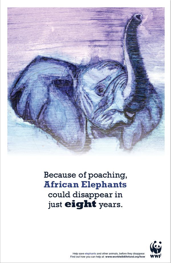 Endangered Animal Posters African Elephants (With images