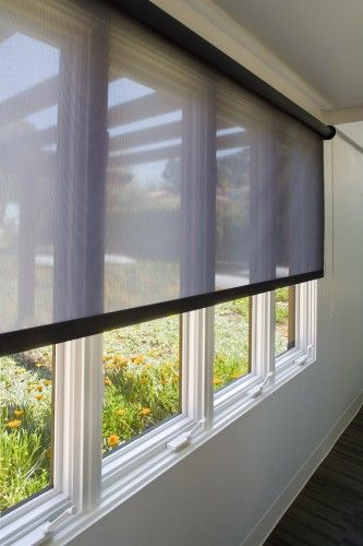 Hunter Douglas Roller Shade Image