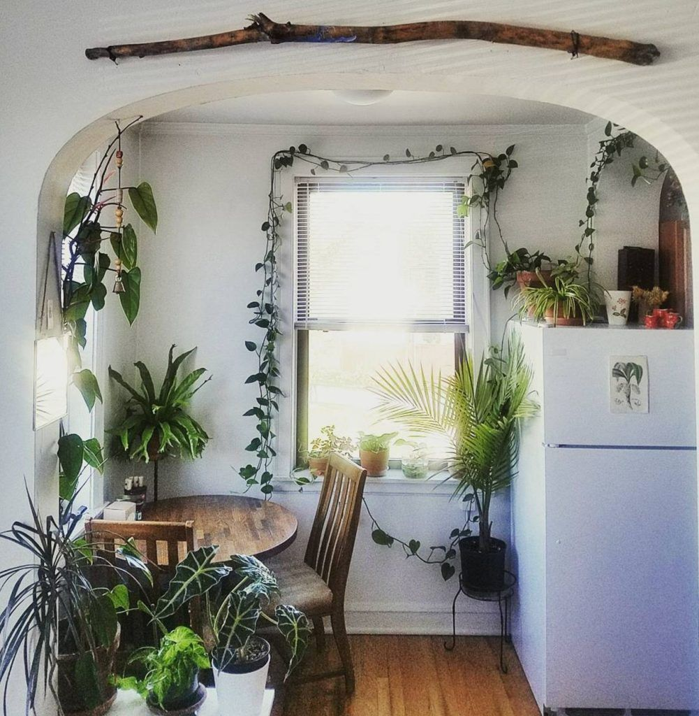 These 21 Plant-filled Homes Are Unbe-leaf-able (With