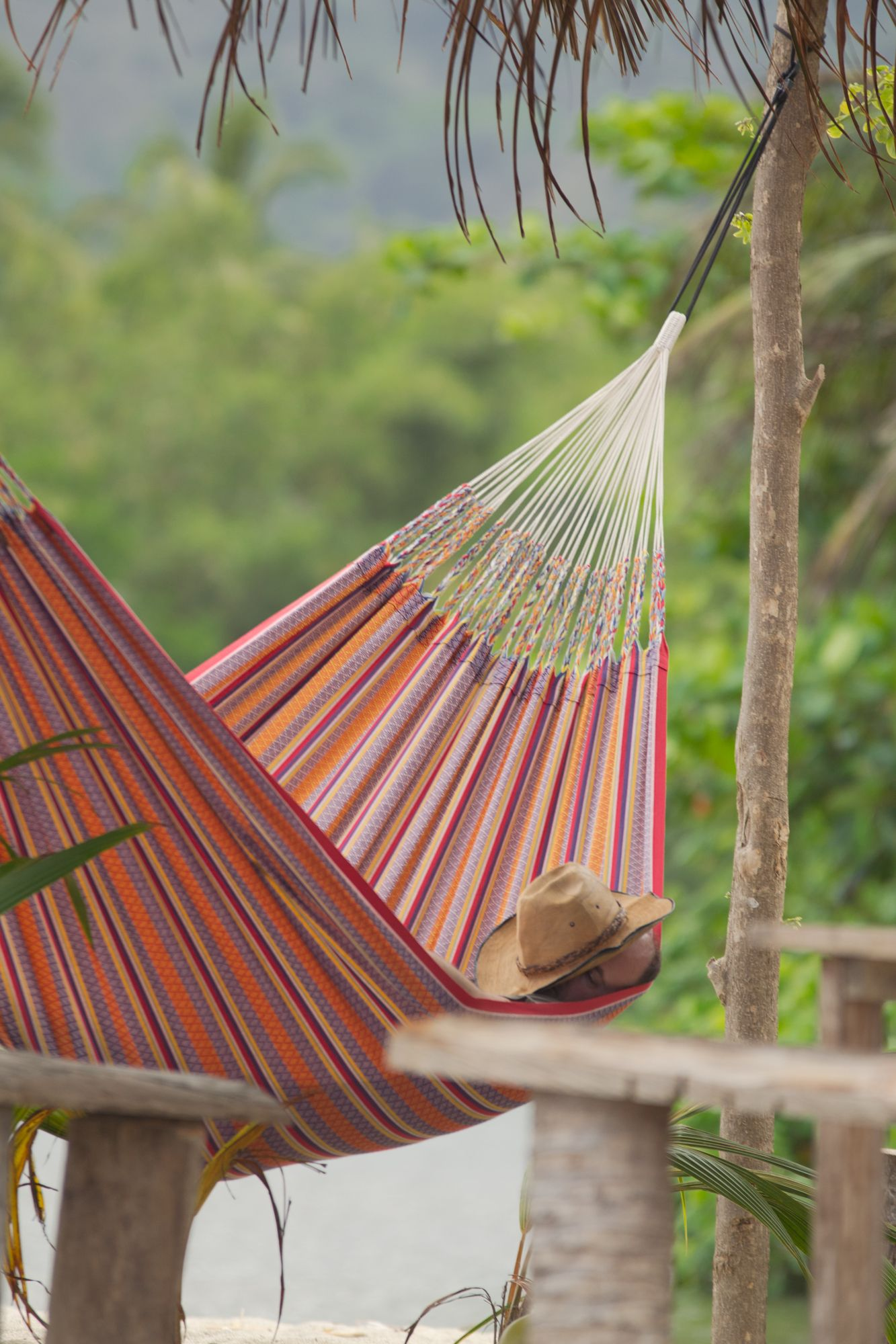 hammock into colombian onekingslane milled hammocks qek swing one lane kings the season