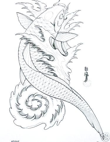The helpful art teacher draw and paint koi carp using for Japanese koi fish drawing